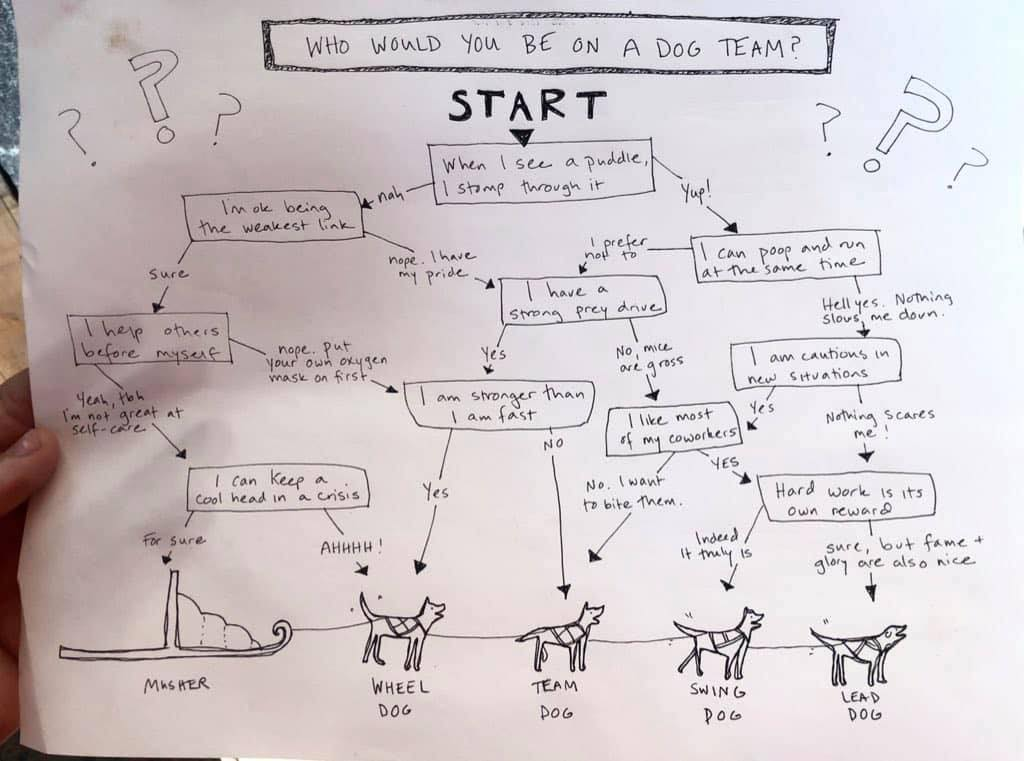 A sketch of a dogteam pulling a sled (no musher), above which a flowchart:   Who would you be on a dog team?  The questions are:  When I see a puddle, I stomp through it.  I'm OK being the weakest link.  I have a strong prey drive.  I can poop and run at the same time.  I am cautious in new situations.  Hard work is its own reward.  I like most of my coworkers.  I am stronger than I am fast.  I help others before myself.  I can keep a cool head in a crisis.